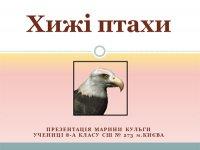 Презентація «Хижі птахи»