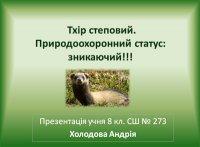 Презентація «Тхір степовий. Природоохоронний статус: зникаючий»