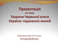 Презентація «Тварини Червоної книги: підковоніс малий»