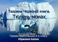 Презентація «Тварини Червоної книги. Тюлень-монах»