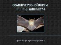 Презентація «Ссавці Червоної книги. Нічниця довговуха»
