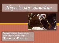 Презентація «Перев'язка звичайна – тварина Червоної книги»