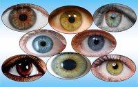 Райдужно різнобарвна частина ока.