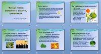 Презентація «Функції листка»
