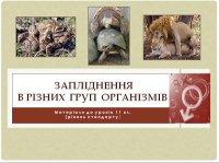 Презентація «Запліднення в різних груп організмів»