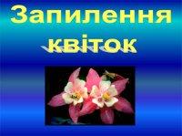 """Презентація """"Запилення квіток"""" - 6 кл."""