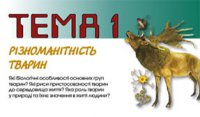 """Розробки уроків до теми 1 """"Різноманітність тварин"""" 7 кл. 1-5 уроки (нова програма)"""