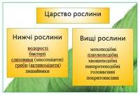 Рослини нижчі та вищі: характерні ознаки