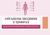 Презентація «Організм людини в цифрах»