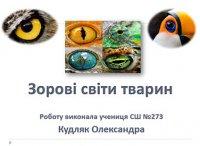 Презентація «Зорові світи тварин»