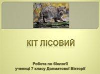 Презентація «Кіт лісовий»