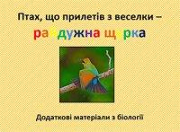 Презентація «Птах, що прилетів з веселки – райдужна щурка»