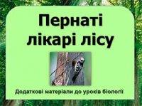 Презентація «Пернаті лікарі лісу»
