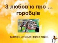 Презентація «З любов'ю про … горобців»