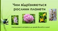 Презентація «Чим відрізняються рослини планети»